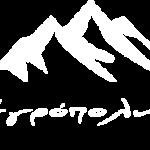 logo white 1